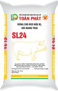 SL24 (Heo nái hậu bị, nái mang thai)